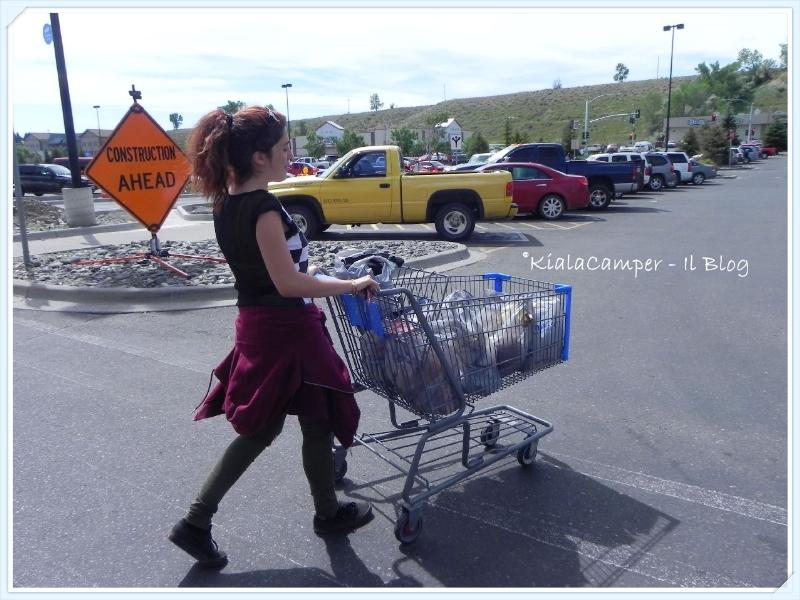 Spesa alla Walmart