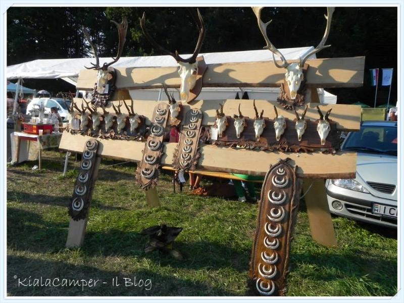 Ungheria, festival, Sóstói Természetvédelmi Terület